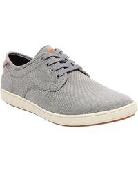 Steve Madden Gray Fenta Sneaker for men