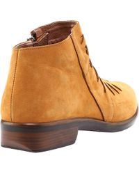 Naot Brown Leveche Bootie