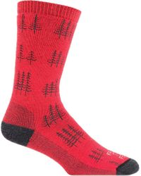 FARM TO FEET Red Cokeville Trees Midweight Crew Sock (3-pairs) for men