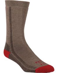 FARM TO FEET - Gray Madison Midweight Solid Hiker Sock (3 Pairs) for Men - Lyst