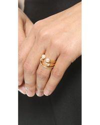 Vita Fede Metallic Ultra Mini Freshwater Cultured Pearl Titan Ring