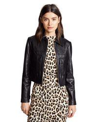 VEDA - Black Jack Leather Jacket - Lyst