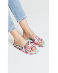 Melissa Multicolor Beach Rain Slide Sandals