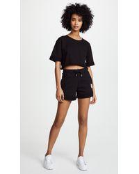 Les Girls, Les Boys Black High Waist Shorts