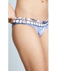 Maaji - Blue Reversible Andes Foliage Bikini Bottoms - Lyst