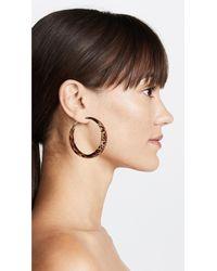 Kenneth Jay Lane Brown Large Hoop Earrings