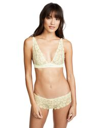 Honeydew Intimates Natural Camellia Lace Bralette