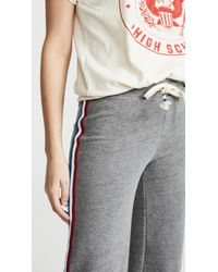 Sol Angeles Gray Sol Culottes