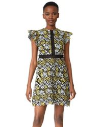 Cynthia Rowley Multicolor Lace Flutter Sleeve Dress