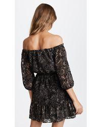 BB Dakota Black Westerly Burnout Velvet Dress