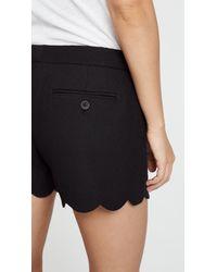 Club Monaco Black Amber Shorts