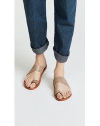 Beek Multicolor Finch Sandals