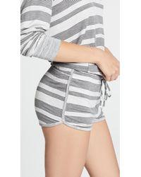 Honeydew Intimates - Gray Disco Chick Lounge Shorts - Lyst