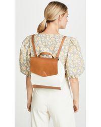 VereVerto Multicolor Mini Macta Convertible Backpack