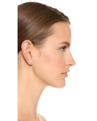 Zoe Chicco - Metallic Freshwater Cultured Pearl Hoop Earrings - Lyst