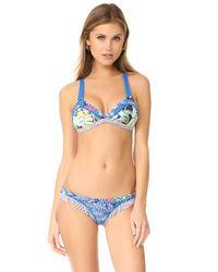 Maaji Blue Fixed Triangle Bikini Top