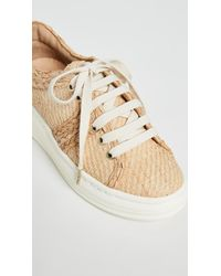 Joie Natural Maddysun Sneakers