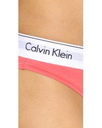 Calvin Klein Pink Modern Cotton Bikini Panties