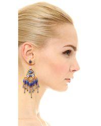 Elizabeth Cole - Multicolor Alessandra Earrings - Lyst