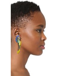 Elizabeth Cole | Multicolor Daya Earrings | Lyst