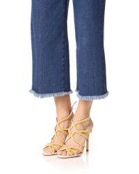 Schutz Metallic Meera Ankle Tie Sandals