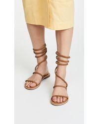 Free People Multicolor Havana Gladiator Sandals