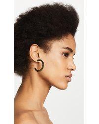 Dinosaur Designs - Multicolor Medium Loop Earrings - Lyst