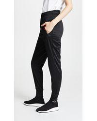 Alexander Wang Black Athletic Sweatpants