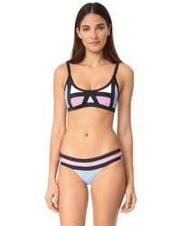 Pilyq | Blue Colorblock Bikini Top | Lyst