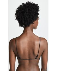 Free People Black Essential Lace Triangle Bralette