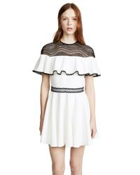 StyleStalker Multicolor Dahlia Circle Dress