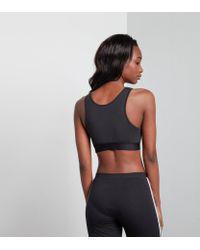 Adidas Originals Black Trefoil Crop Top