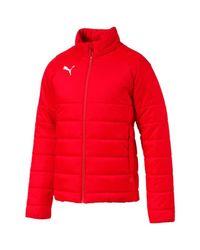 PUMA Red Dauenjacken Sport LIGA Casuals Padded Jacket 655301 001