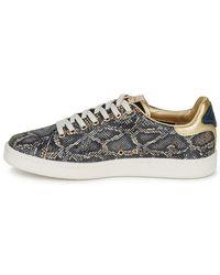 Serafini Lage Sneakers J.connors in het Gray
