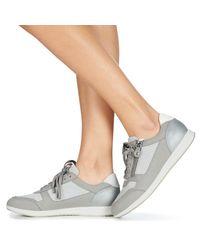 Geox Lage Sneakers D Avery in het Gray