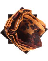 L'ATELIER DU SAC X-9909 Pashmina Accessories Brown Men's Aftercare Kit In Brown for men
