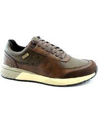 Baskets basses SKE-I19-66398-BRN Skechers pour homme en coloris Brown