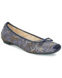 Ballerines Elizabeth Stuart en coloris Blue
