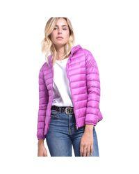 Nikita Brown Purple Hood Jacket