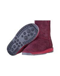 U.S. POLO ASSN. Purple Heyo Women's Mid Boots In Multicolour