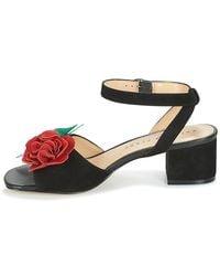 Katy Perry Black The Elanor Sandals