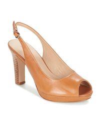 Sandales André en coloris Brown