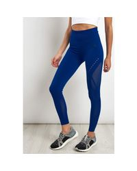 Adidas Blue Warp Knit Tights Mystery Ink Women's Tights In Multicolour
