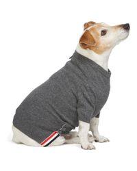 メンズ Thom Browne グレー カシミア 4bar ドッグ セーター Gray