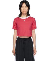 Adidas Originals ピンク ロゴ クロップ T シャツ Pink