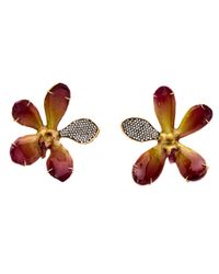 Silvia Furmanovich   Multicolor Resin Coated Orchid Earrings   Lyst