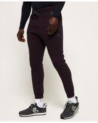 Superdry Multicolor Core Gym Tech Joggers for men