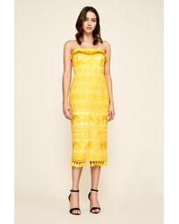 Tadashi Shoji Tulle Sol Strapless Lace Midi Dress In Yellow