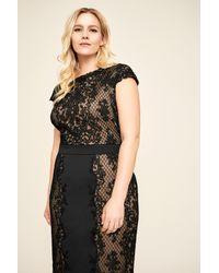 Tadashi Shoji Black Alexandra Embroidered Lace Dress - Plus Size