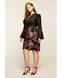 Tadashi Shoji Black Isabella Dress - Plus Size